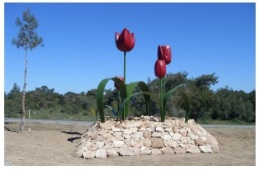 tulips-roadside-display