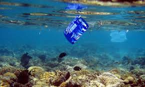 Plasic bags in the sea_3