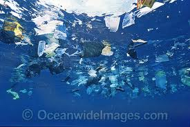 Plasic bags in the sea_4