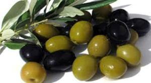 Olive_4