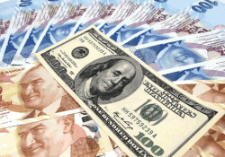 Dollar - Lira